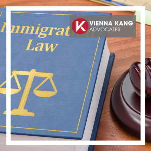 The Recent Immigration Proposals and the Criminal Law